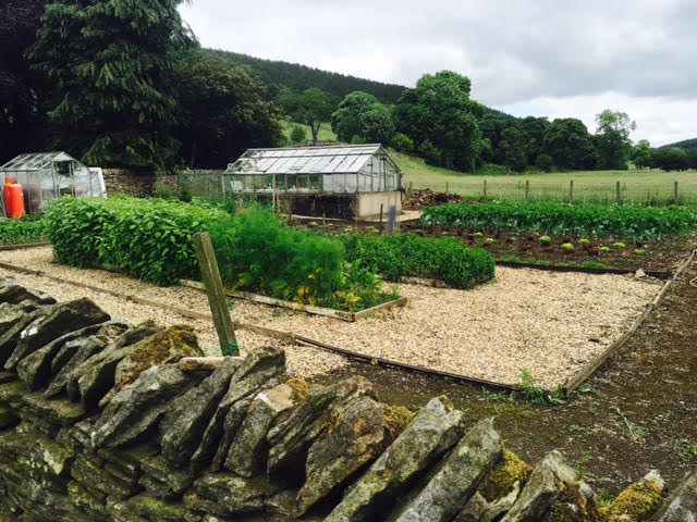 the allotment at the lord crewe arms